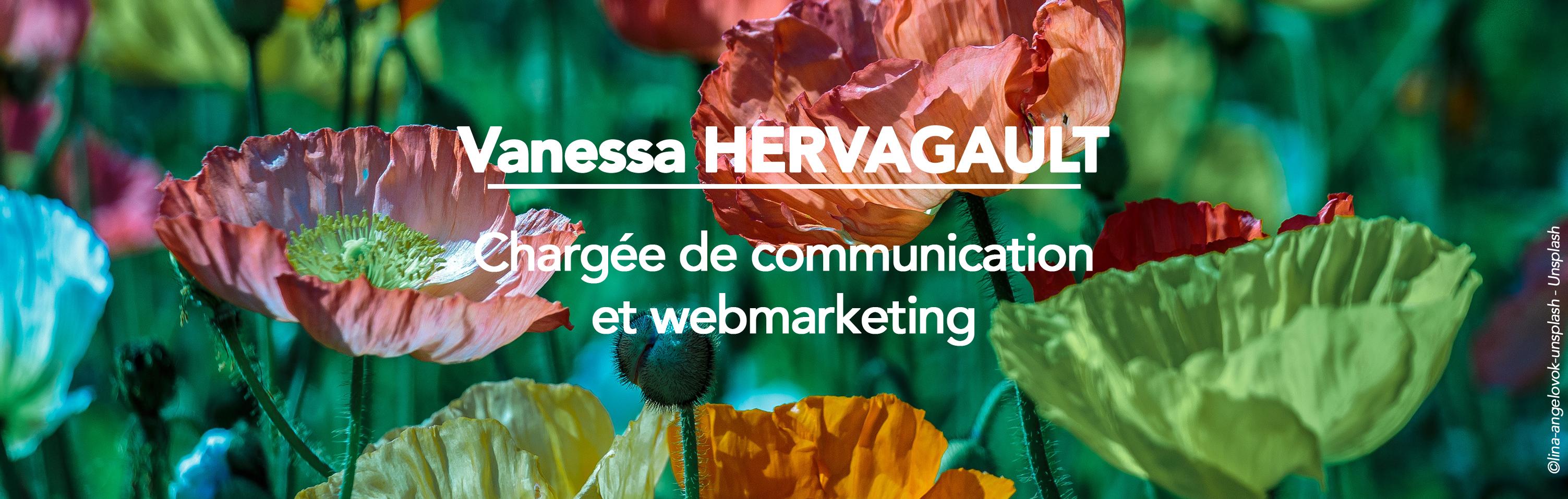 Header- Site web - Vanessa HERVAGAULT